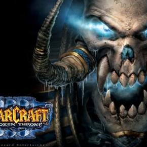Skupinové hraní počítačové hry Warcraft - po síti